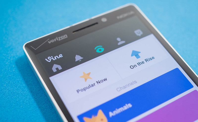 دانلود آخرین نسخه Vine برای ویندوزفون با قابلیت Like با double-tap