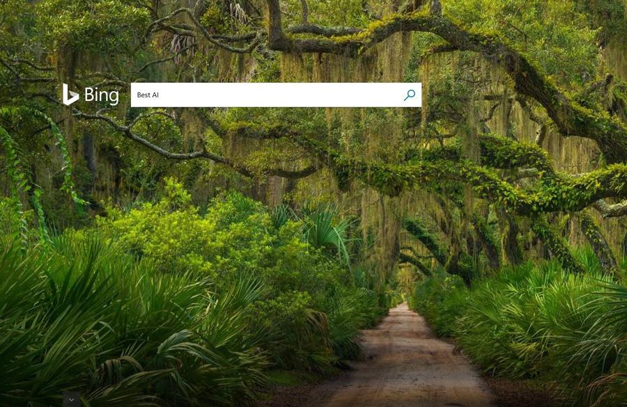 قابلیت جدید بینگ با نام multi-perspective به شما همه ی پاسخ ها را نشان می دهد!